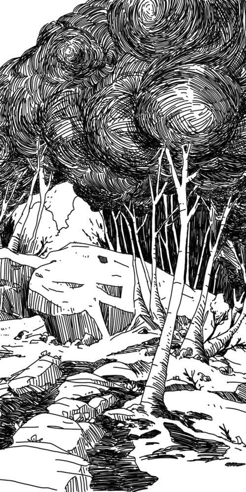 Foret - Illustration Romain Laforet